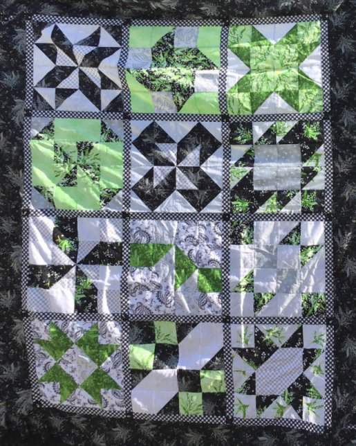 """A Quilt made by a member of """"The Good Time Quilters of Blind Bay,"""" Sorrento, British Columbia, Canada. Made my originally designed for BOMquilts.com 2006 Block of the Month quilt called """"Cinnamon-teen Chocolate Figs & Roses."""